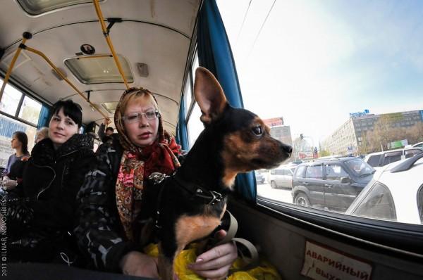 Новосибирск, фото история Ильнара Салахиева (87)