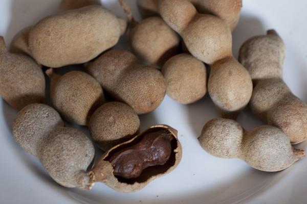 Тамарин в Таиланде - фрукт как орех