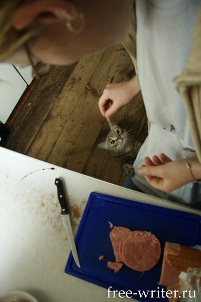 Колывань. Фотографии Ольги Салий (2)