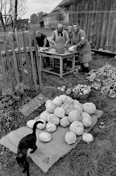Фотоистория про Деревню Радость