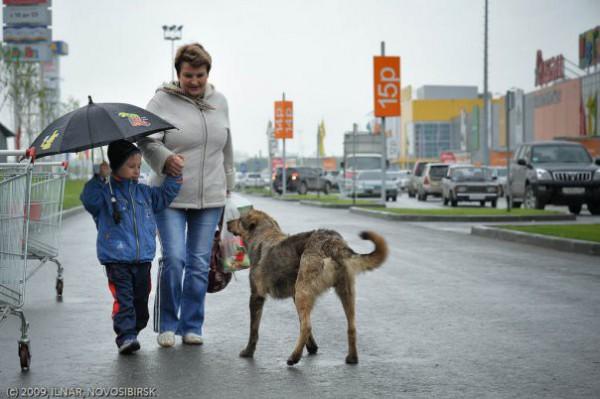 Новосибирск, фото история Ильнара Салахиева (150)