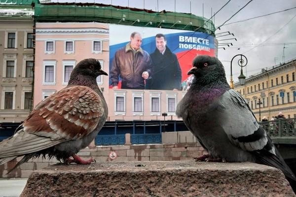 Путин, Медведев, Россия