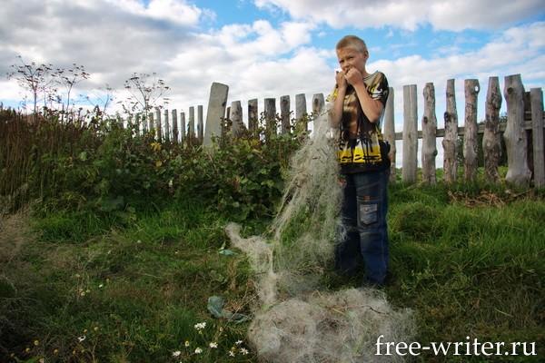 Колывань. Фотографии Ольги Салий (5)