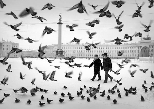 Санкт-Петербург. Russia. St.Petersburg, фото Александр Петросян (61)
