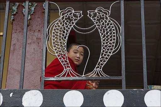 Гималаи, Сикким (2)