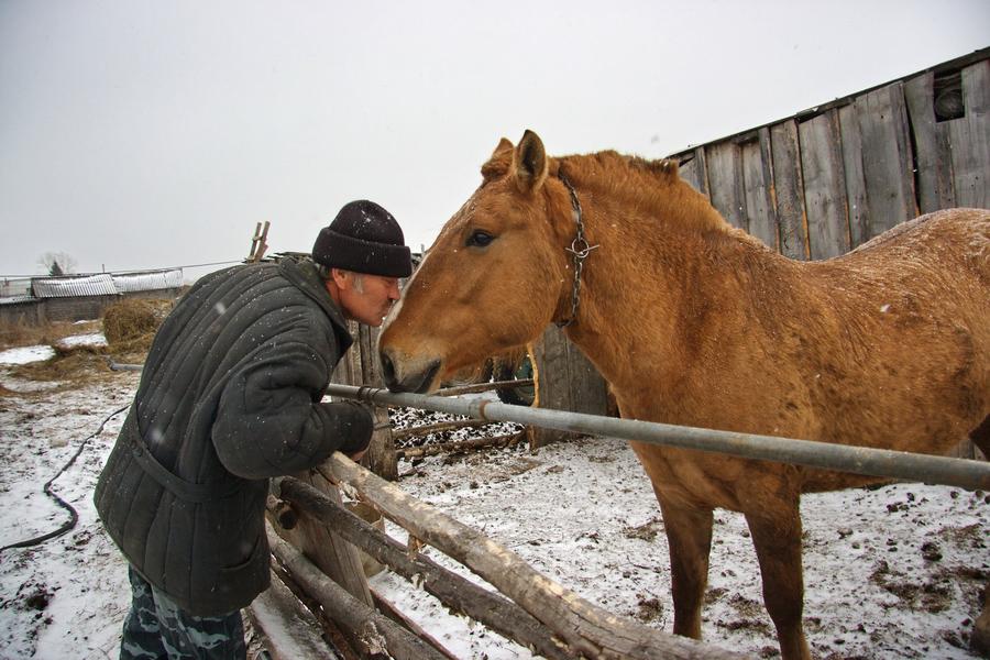 Николаевка. Эстонская деревня в Сибири