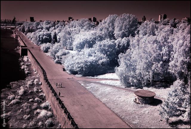 Инфракрасное фото - Новосибирск (4)