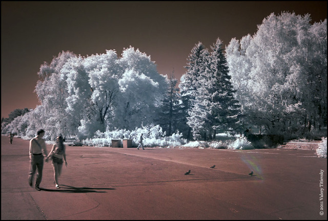 Инфракрасное фото - Новосибирск (2)