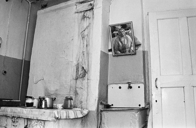 Тундра. Фотоистория Оленный народ