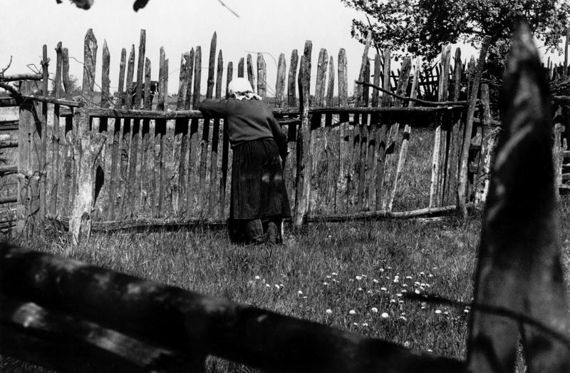 Деревня Киселевка, фото Александра Степаненко