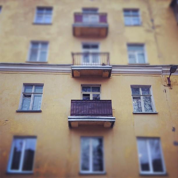 Жанровое фото iPhone (15)