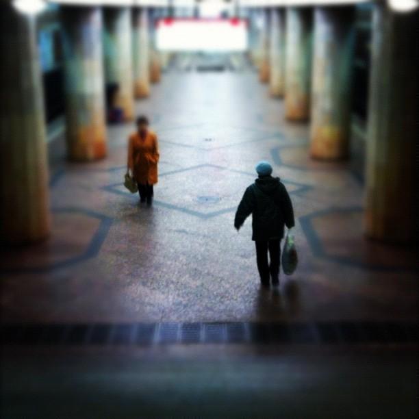 Жанровое фото iPhone (4)