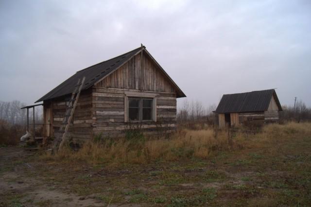 Дом Палыча