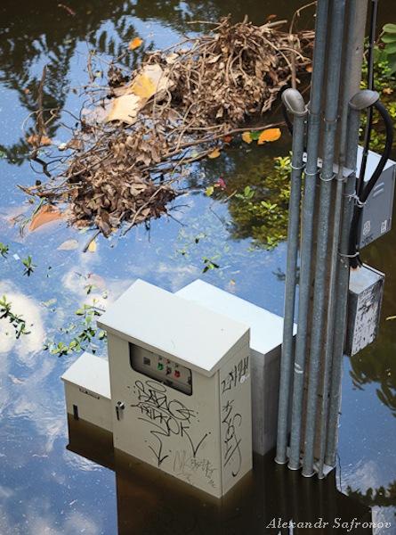Наводнение в Бангкоке: как это было на самом деле (35)