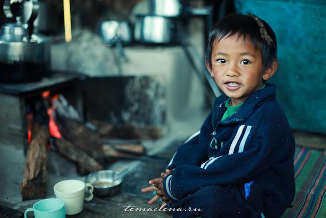 Горы Лангтанга, трек в Непале (79)