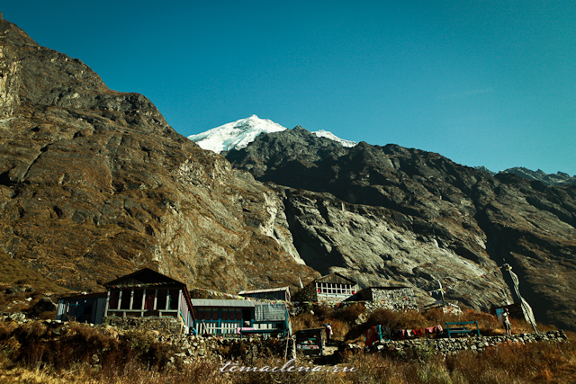 Горы Лангтанга, трек в Непале (65)