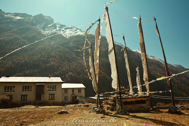 Горы Лангтанга, трек в Непале (63)
