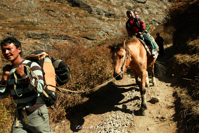 Горы Лангтанга, трек в Непале (38)