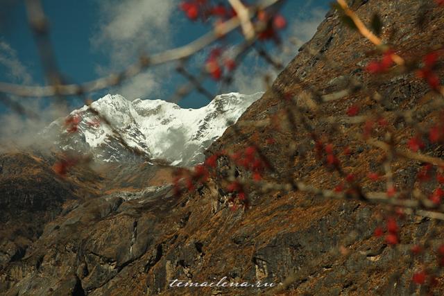Горы Лангтанга, трек в Непале (33)