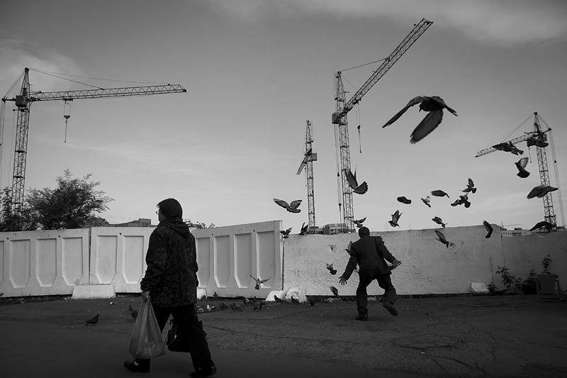 Про Новокузнецк и голубей. Фотоистория