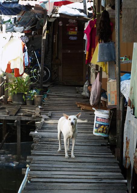 Бангкок, первые впечатления