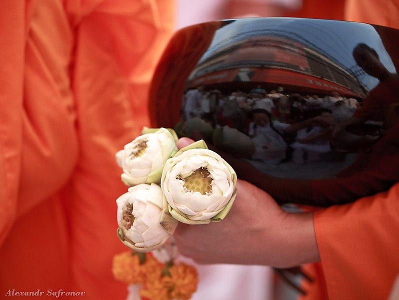 Массовое подаяние монахам в Бангкоке, фоторепортаж (26)