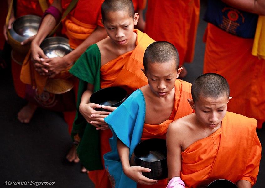 Массовое подаяние монахам в Бангкоке, фоторепортаж (24)