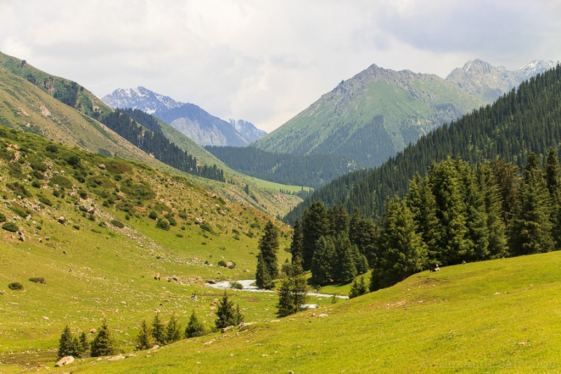 Фоторассказ о Киргизии. Фотограф Александр Сафронов (26)