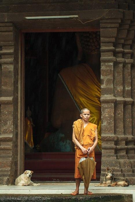 Золотой треугольник в Таиланде (8)