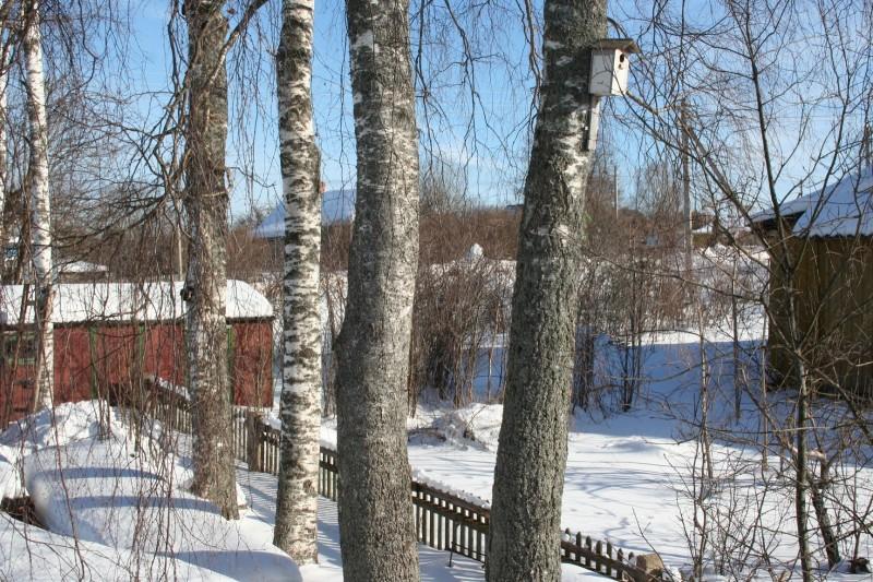 лыжи в деревне (9)