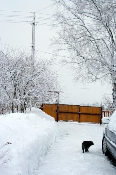 фото деревни зимой (32)