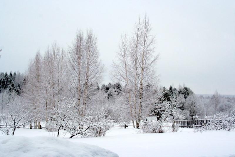 фото деревни зимой (27)