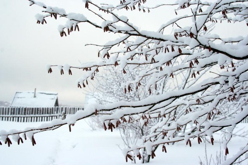 фото деревни зимой (23)