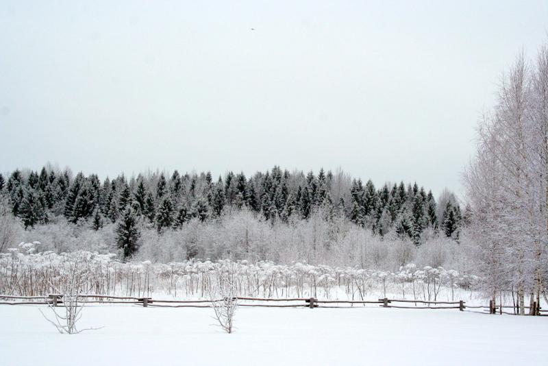 фото деревни зимой (22)