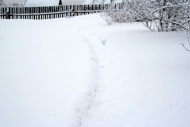 фото деревни зимой (20)