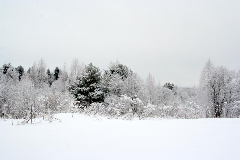 фото деревни зимой (16)