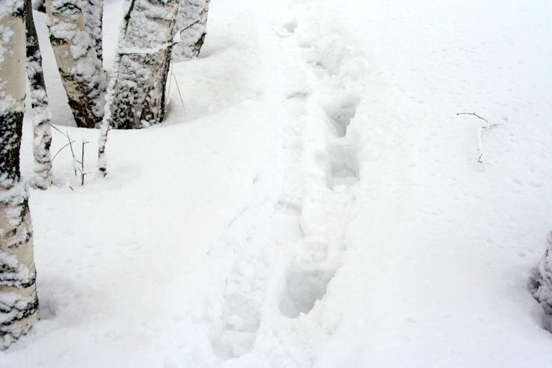 фото деревни зимой (13)