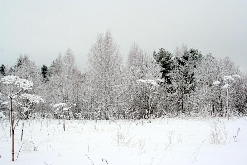 фото деревни зимой (10)