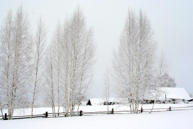 фото деревни зимой (6)