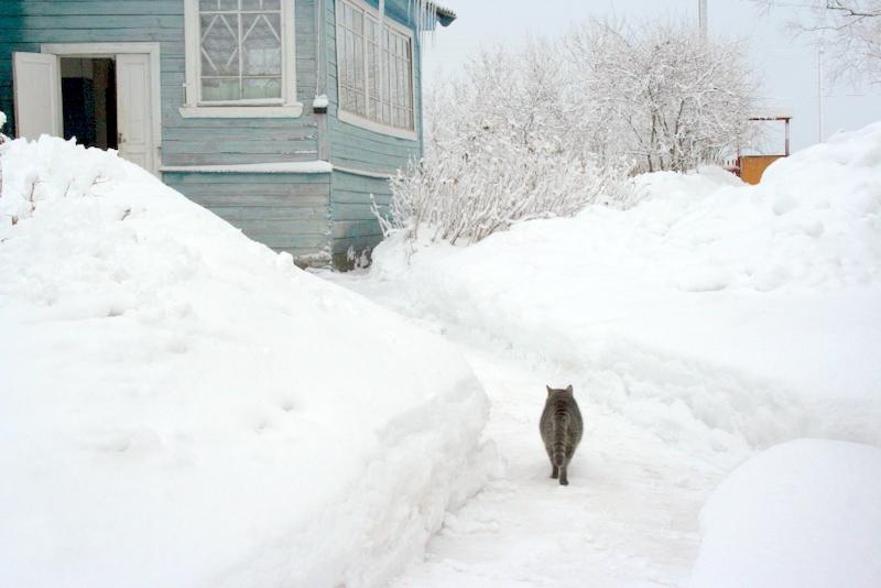 фото деревни зимой (3)
