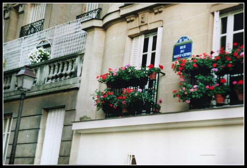 фото на пленку Париж (31)