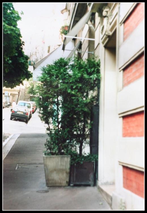 фото на пленку Париж (28)