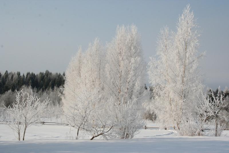 Русская деревня зимой (23)