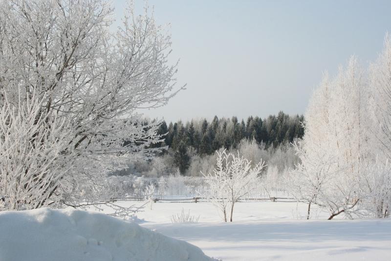 Русская деревня зимой (22)