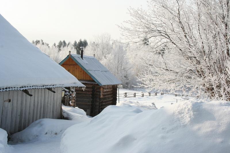 Русская деревня зимой (21)