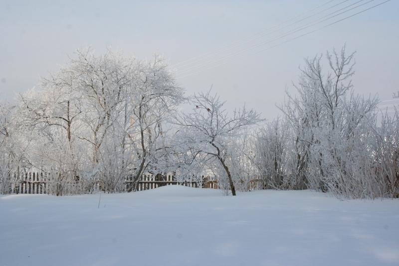 Русская деревня зимой (17)