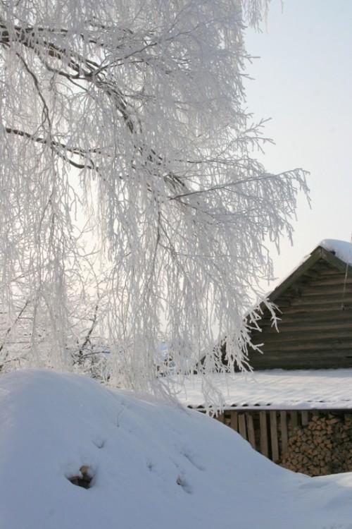 Русская деревня зимой (15)