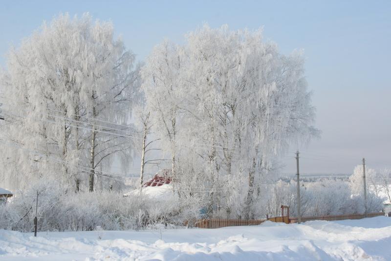 Русская деревня зимой (12)