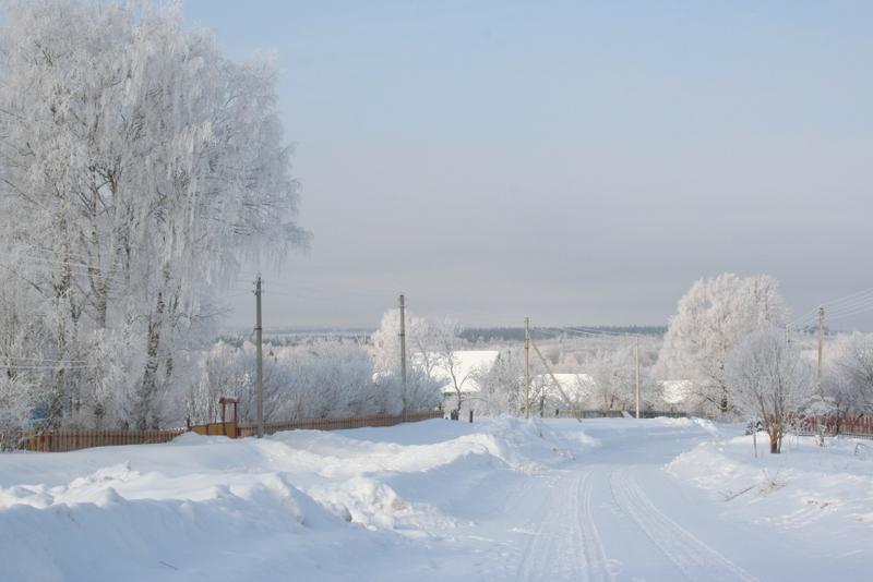 Русская деревня зимой (11)