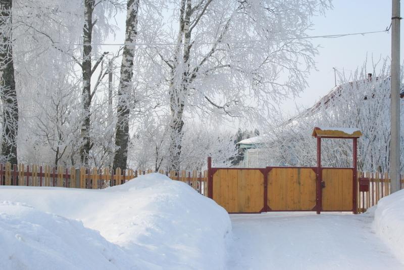 Русская деревня зимой (10)